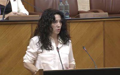 Ruiz anuncia un plan de choque para la Renta Mínima como una de las nuevas medidas para paliar la crisis social a medio plazo